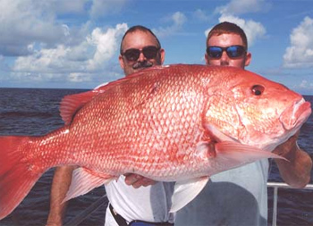 Marinas charters discover savannah ga for Deep sea fishing savannah ga